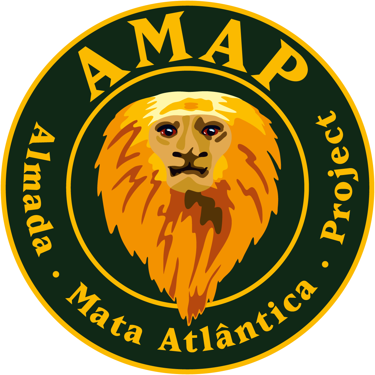 AMAP 1